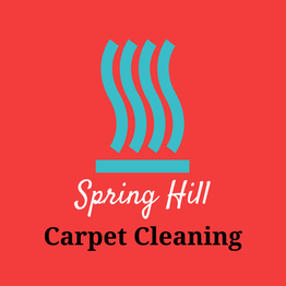 The logo for Spring Hill Carpet Cleaning is a teal blue wave of steam on a red background